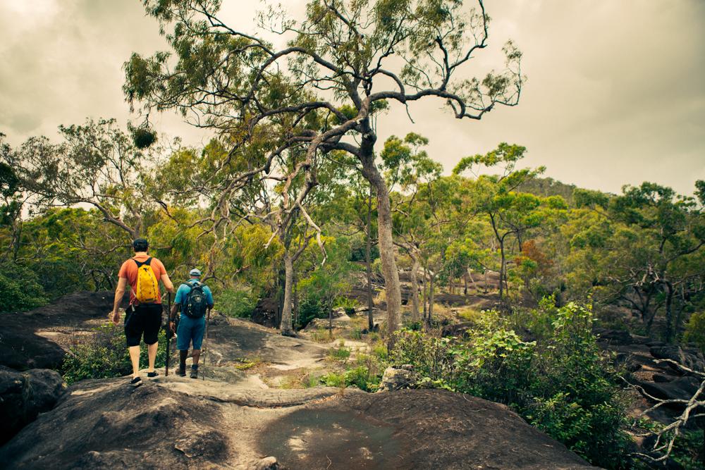 Walk with Guurrbi Tours, Queensland