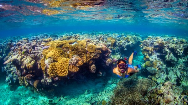 Person swimming among coral formations