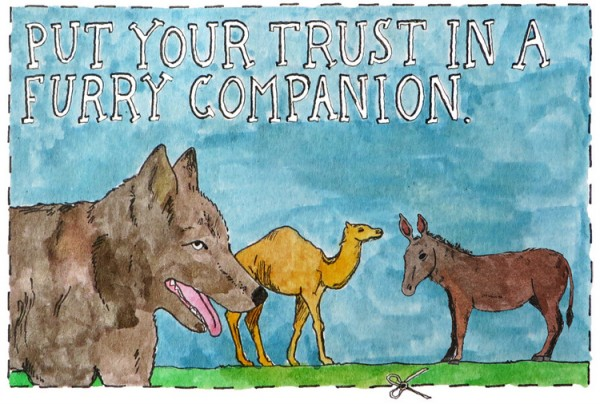 Trust a furry companion