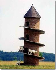 Goat climbing tower
