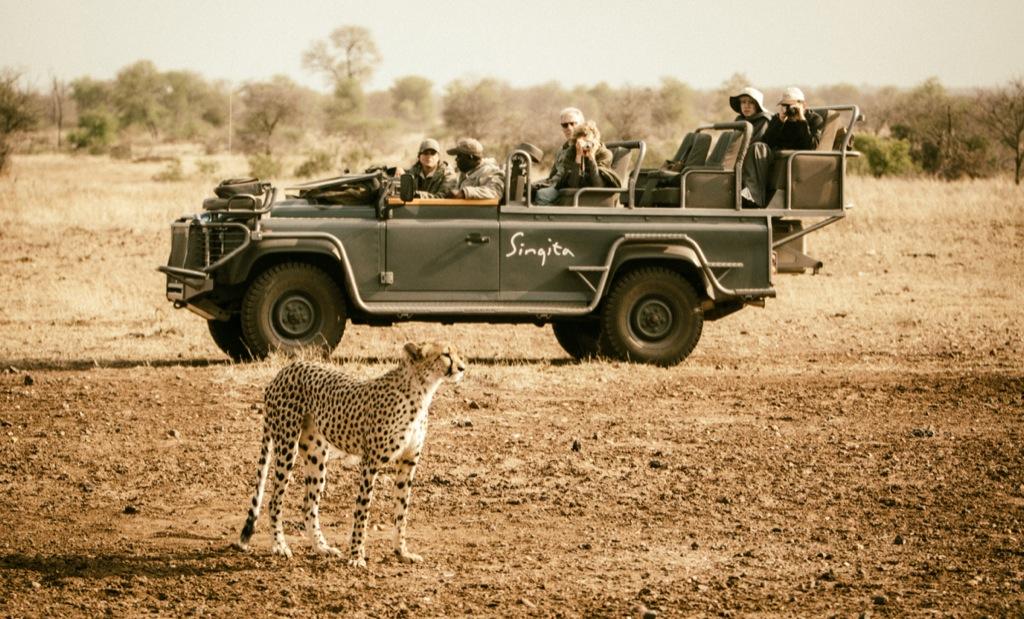 African safari perfection: A look inside Singita's resorts in Kruger National Park