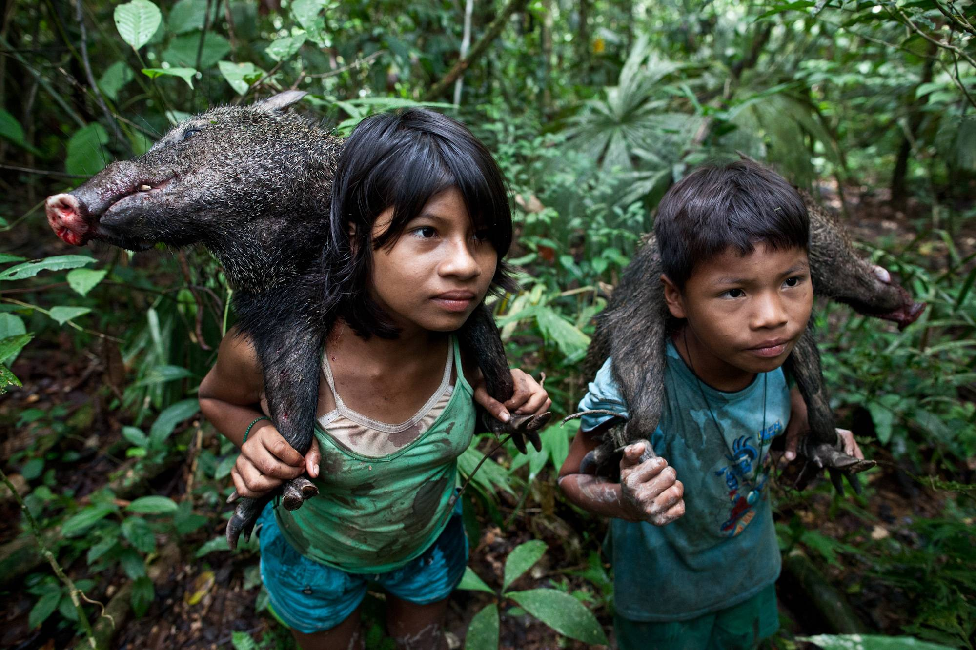 Uncontacted Amazon Tribes Isolated Tribes Of The Amazon