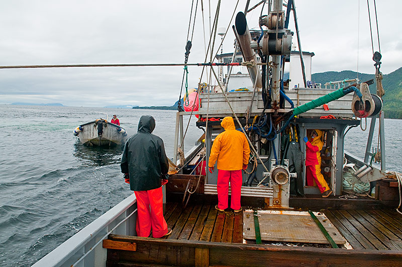 What it 39 s like to work on a commercial fishing boat in alaska for What is commercial fishing