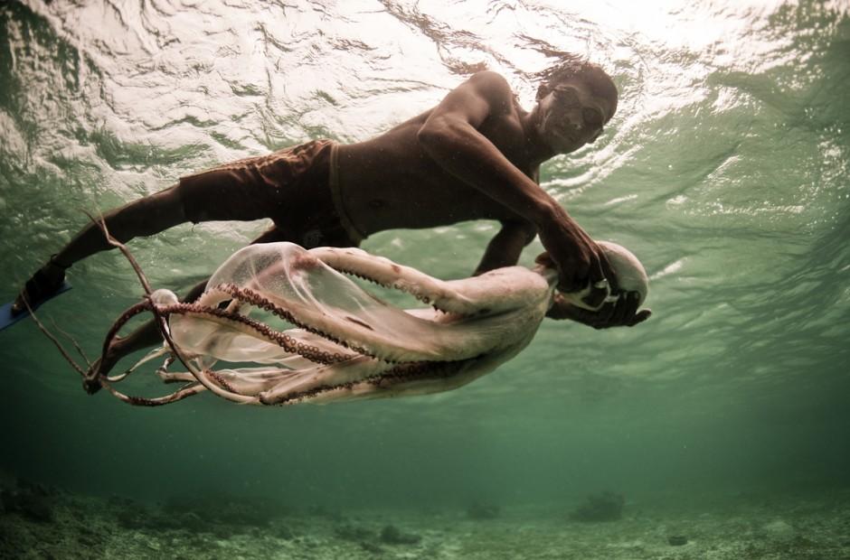bajau-laut-octopus