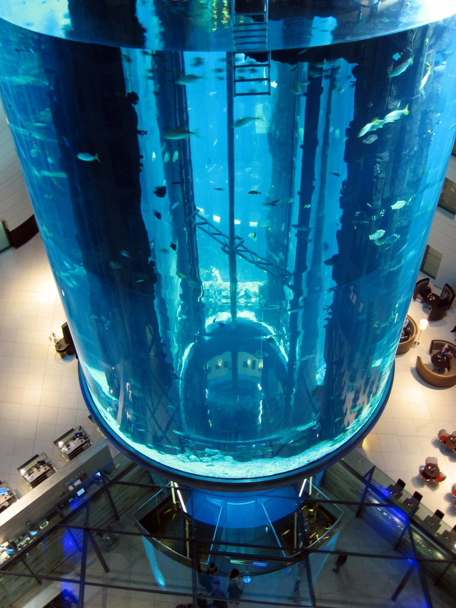 20 of the world 39 s most amazing aquariums matador network for Cylindrical fish tank