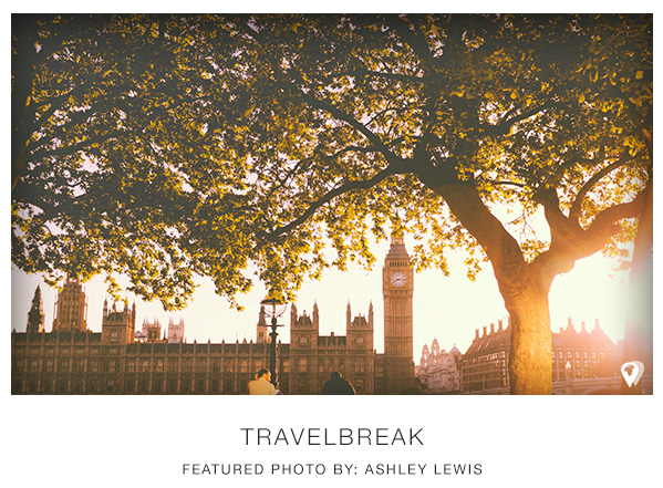 TravelBreak.BestApps.AshleyLewis.Tree_