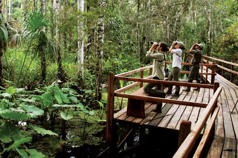 Inkaterra Reserva Amazonica (Puerto Maldonado, Peru)