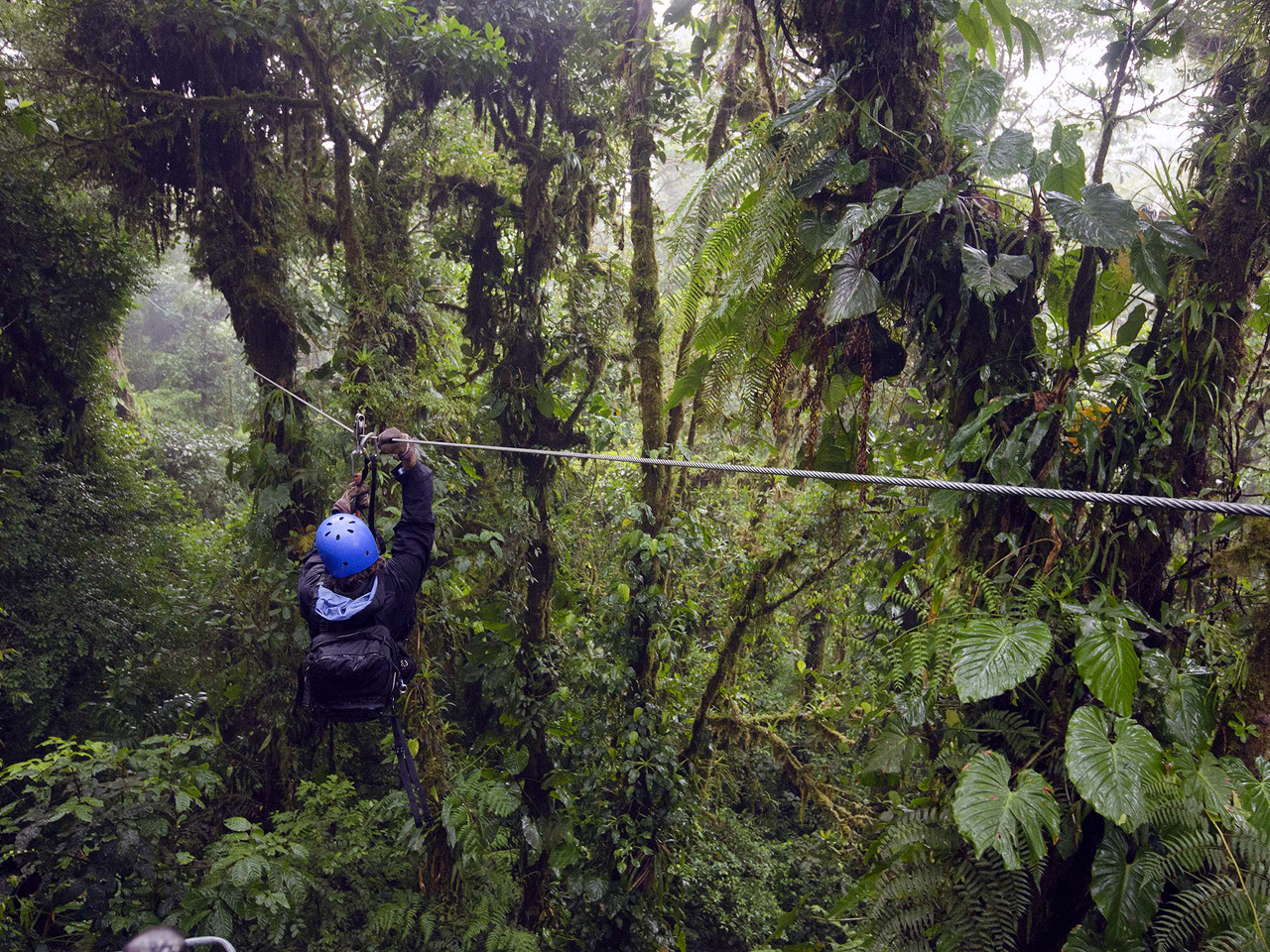 Monteverde Cloud Forest zipline