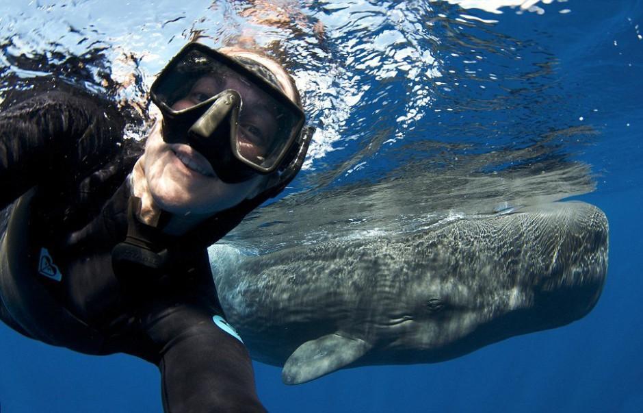 whale-selfie