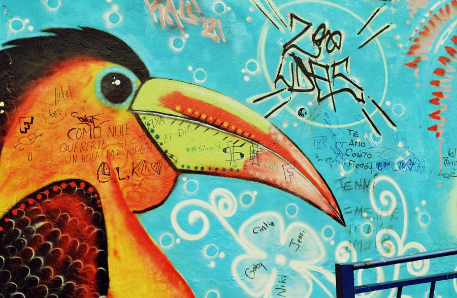 A visual journey through the street art of Cuenca, Ecuador