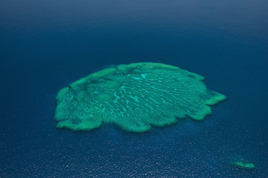 A vivid coral atoll typical of the Pacific.Photo: Jürgen Freund