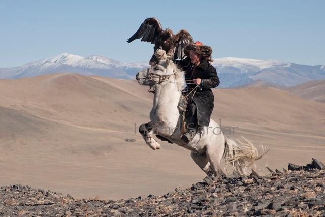 eagle-hunting