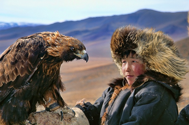 eagle-trainer