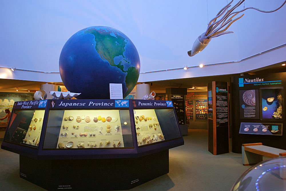 Bailey-Matthews National Shell Museum
