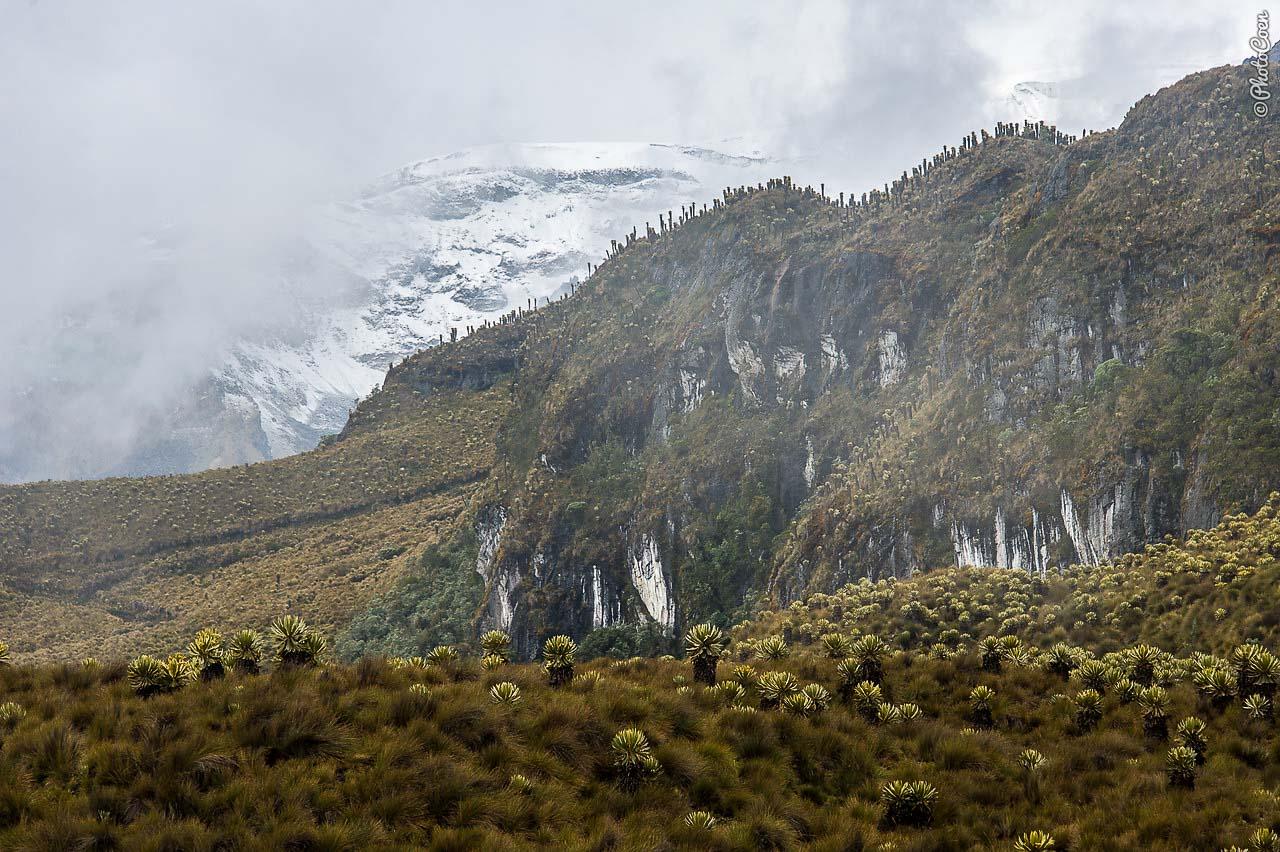 2b.Col-Nevado