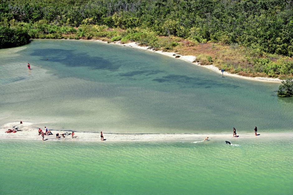 Dog Beach, Fort Myers & Sanibel