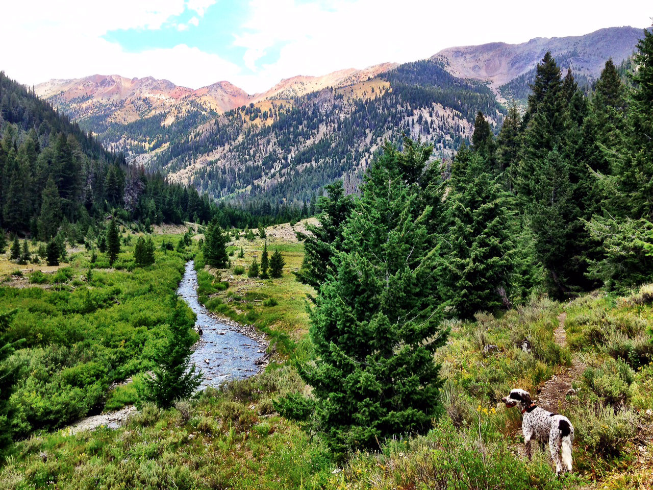 Big Wood River, Sun Valley