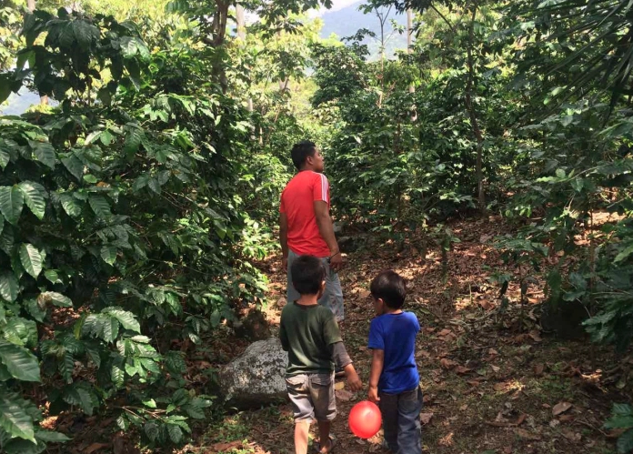 Caption: This farm helped keep our coffee addiction alive and kicking. And for this we are grateful. Global Goulets