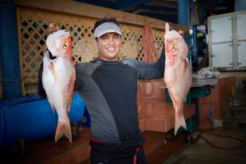 aruba fish