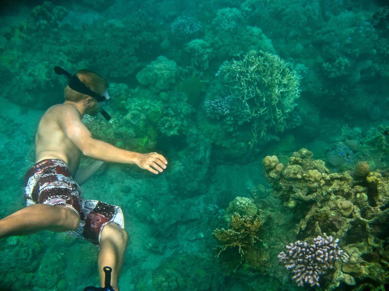 STA Adventure Activies Snorkeling 2