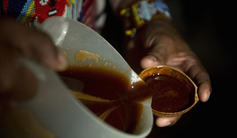 For me, ayahuasca was as good as therapy. Here's what the science says