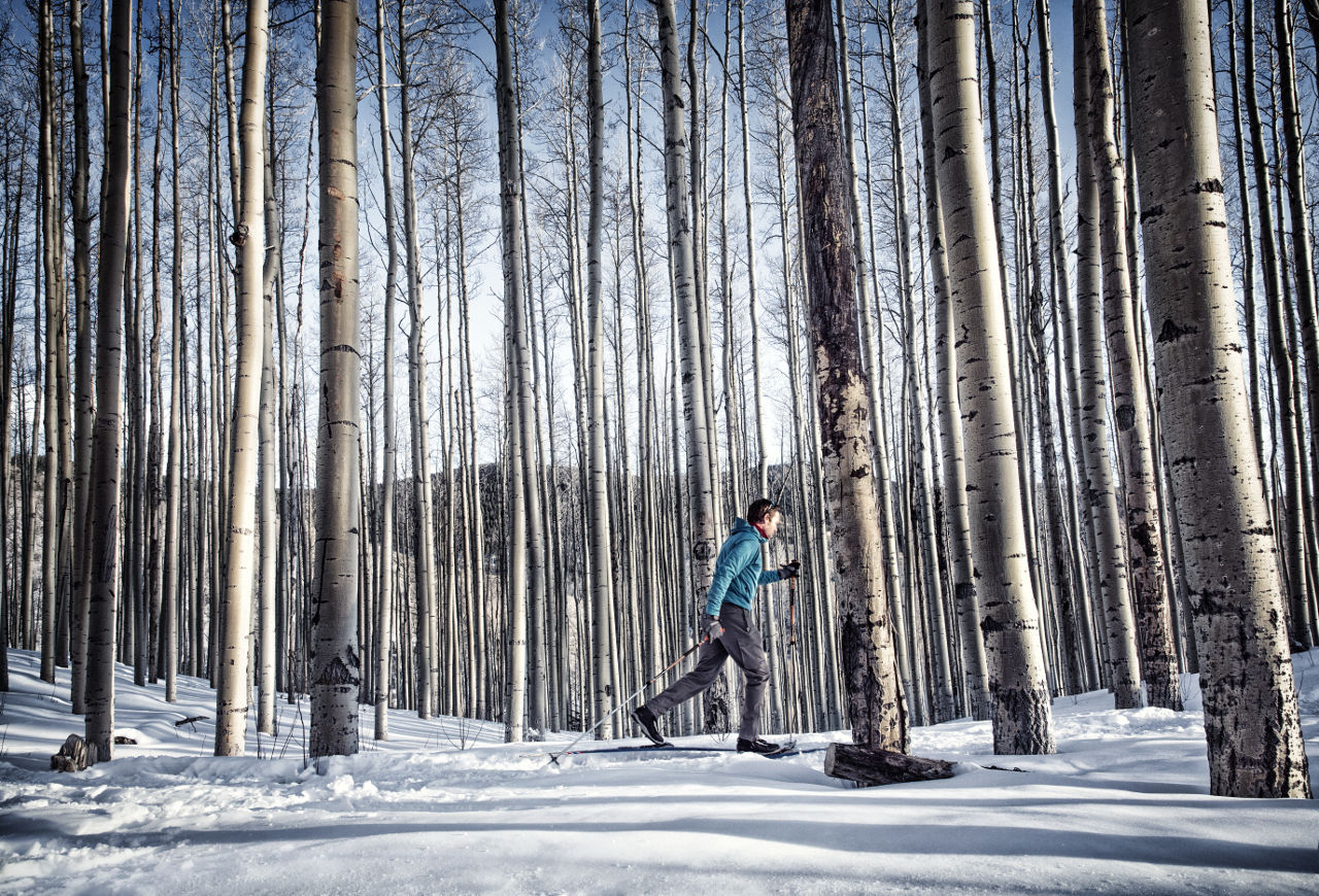 New Mexico snowshoe