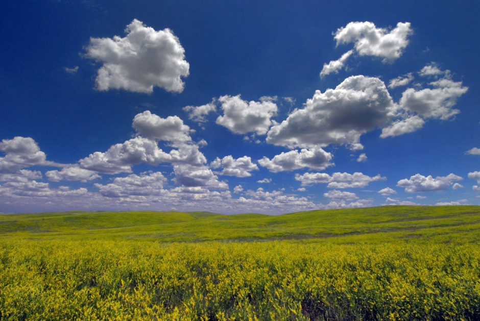 South Dakota prairie