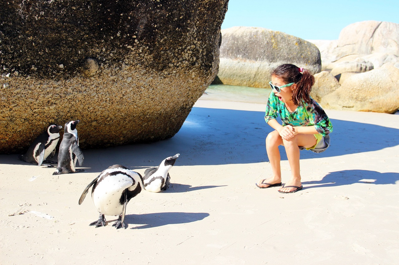 Kid and penguins