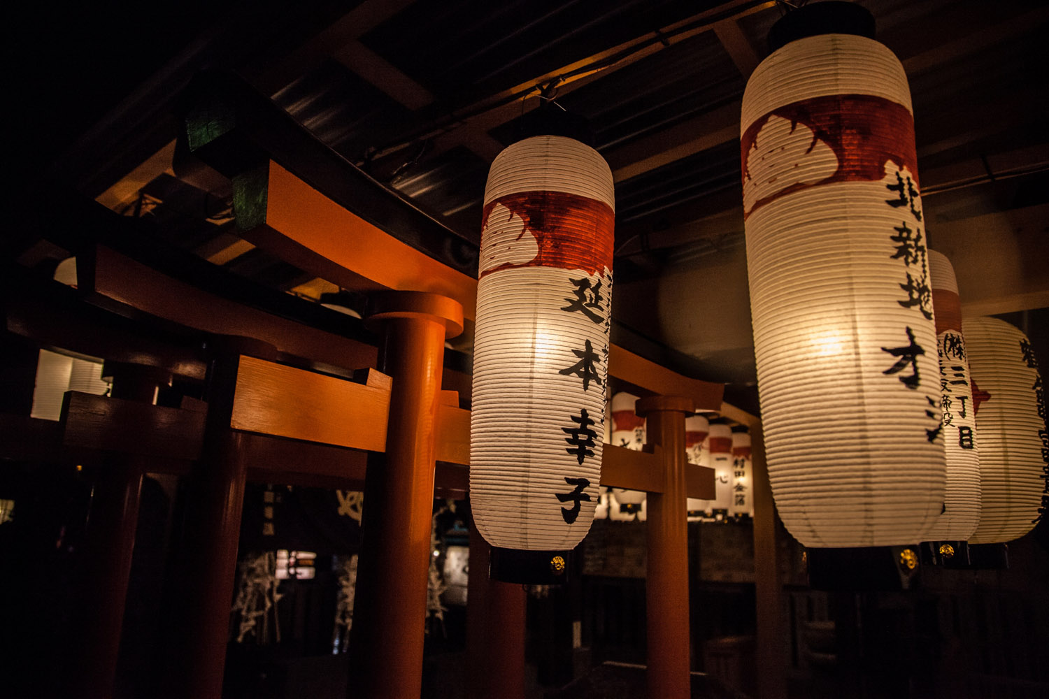 Swaying lanterns frozen by a fast shutter – Hozen-ji temple, Osaka