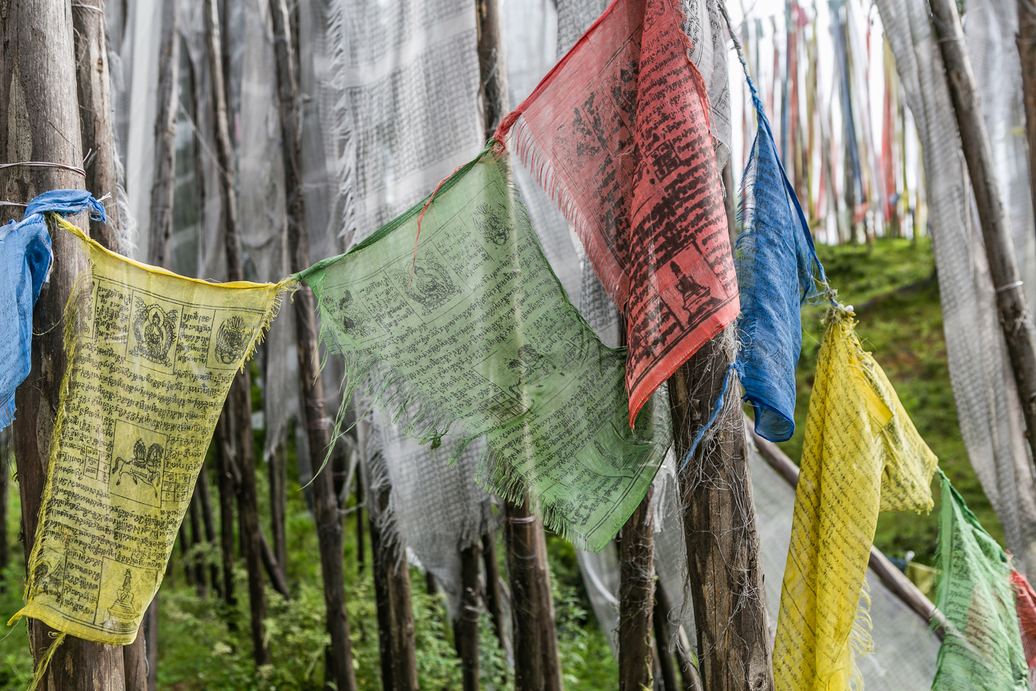 Prayer flags wait for the wind horse