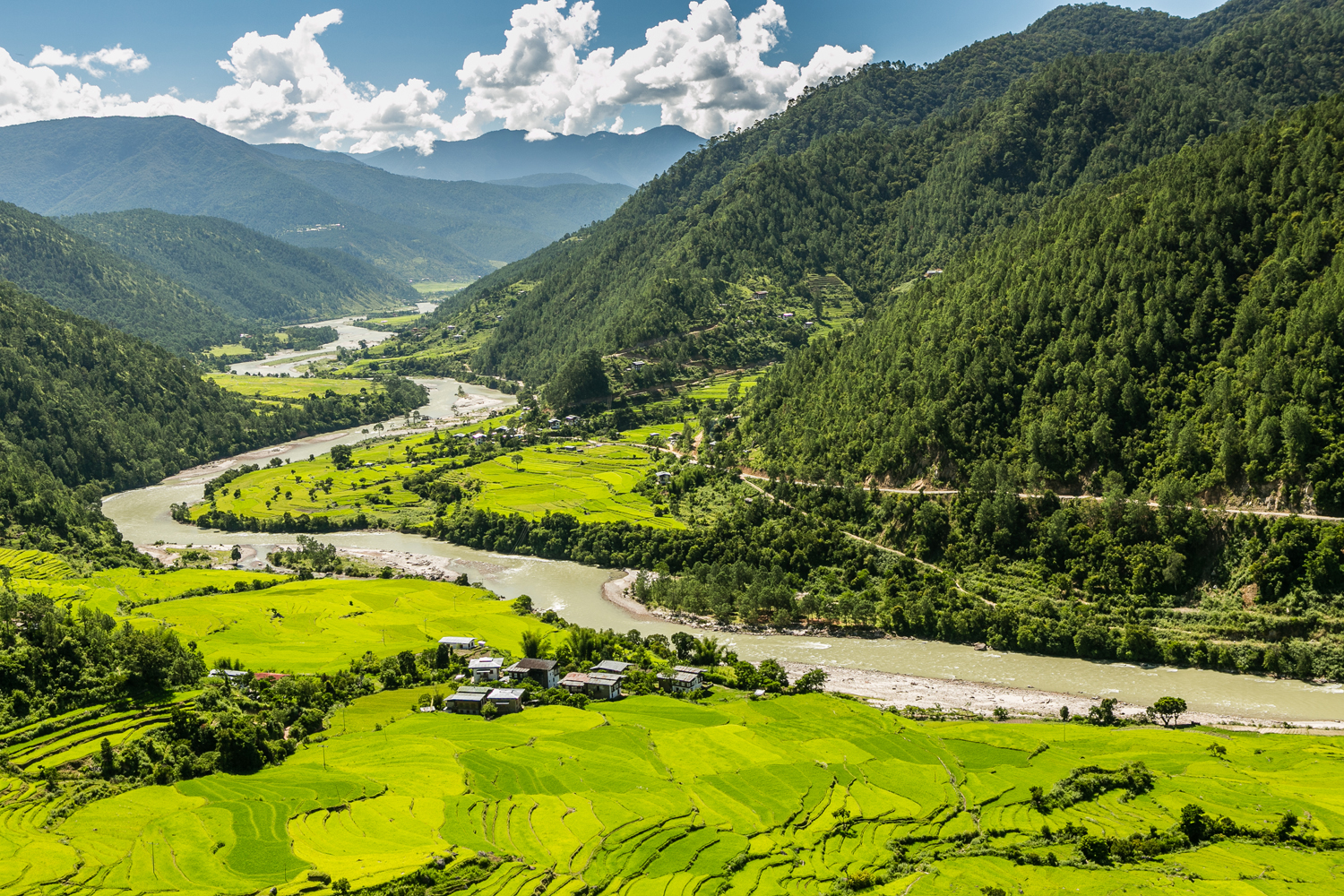 Rice terraces meet the Mo Chhu river in the Punakha-Wangdue valley