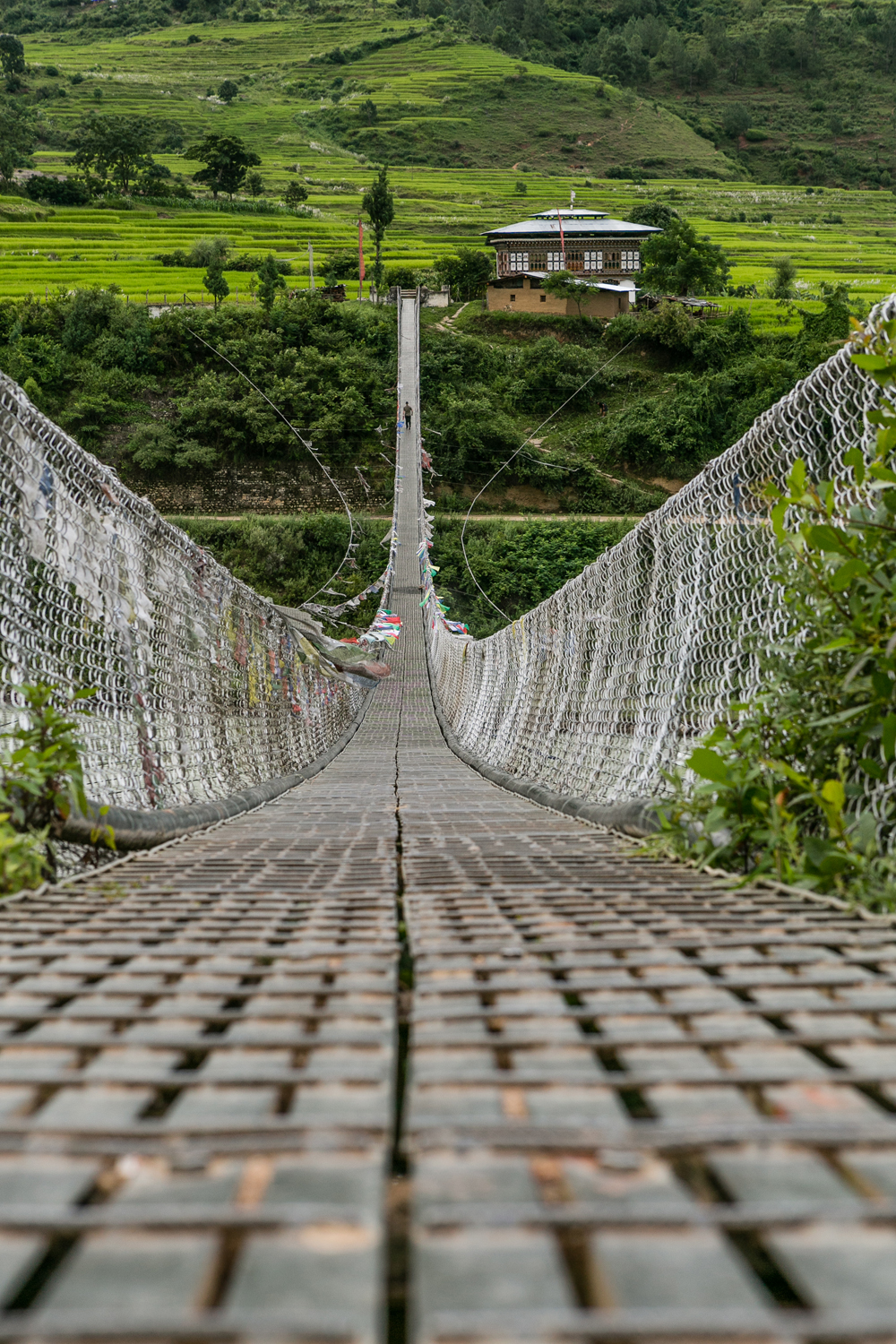 Punakha's suspension bridge