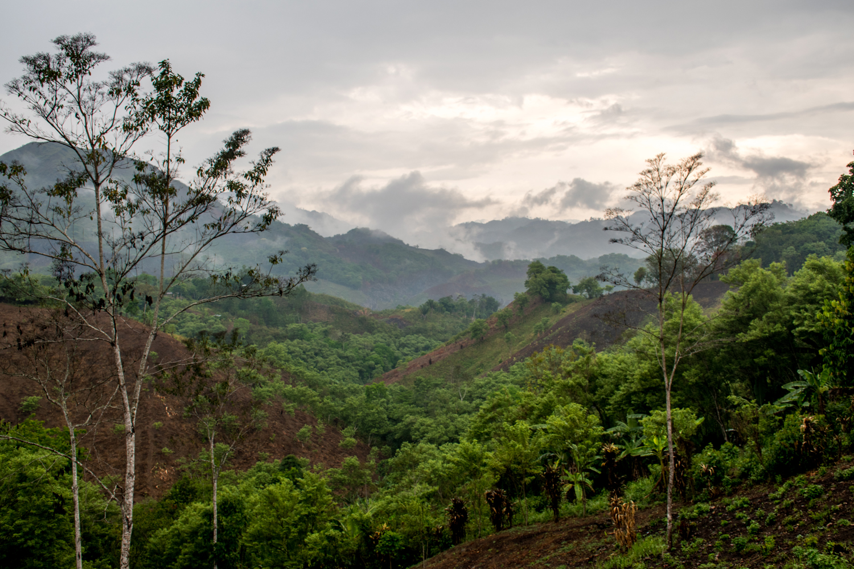 Mountainside farmlands of Guatemala.