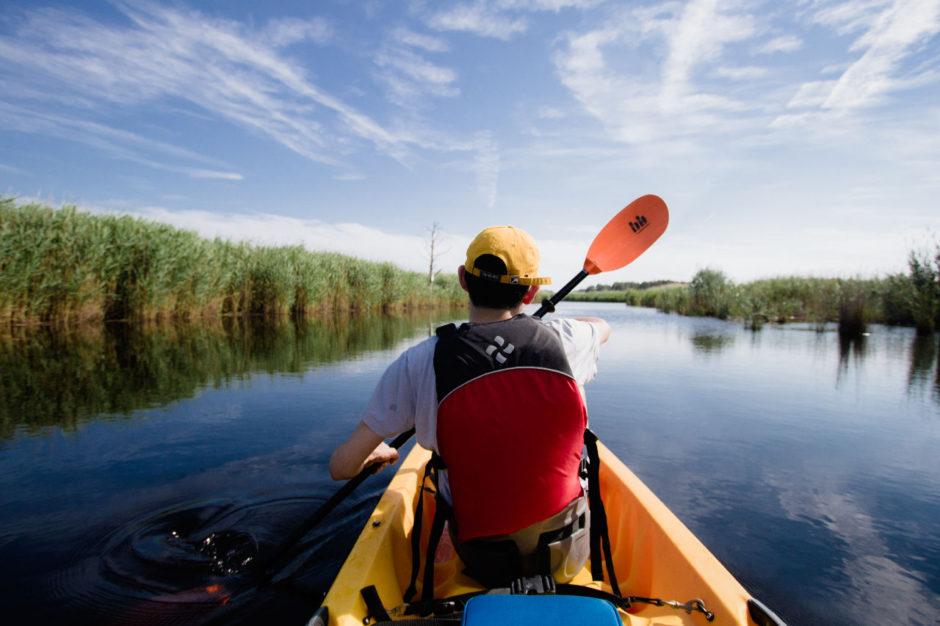 Kayaking Back Bay