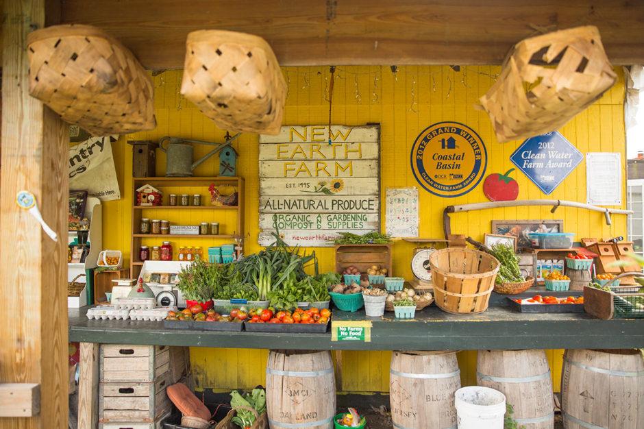 New Earth Farm Virginia Beach
