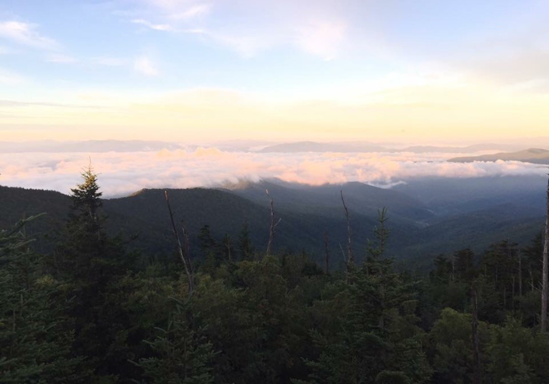 5 spots to check out in and around Great Smoky Mountains National Park