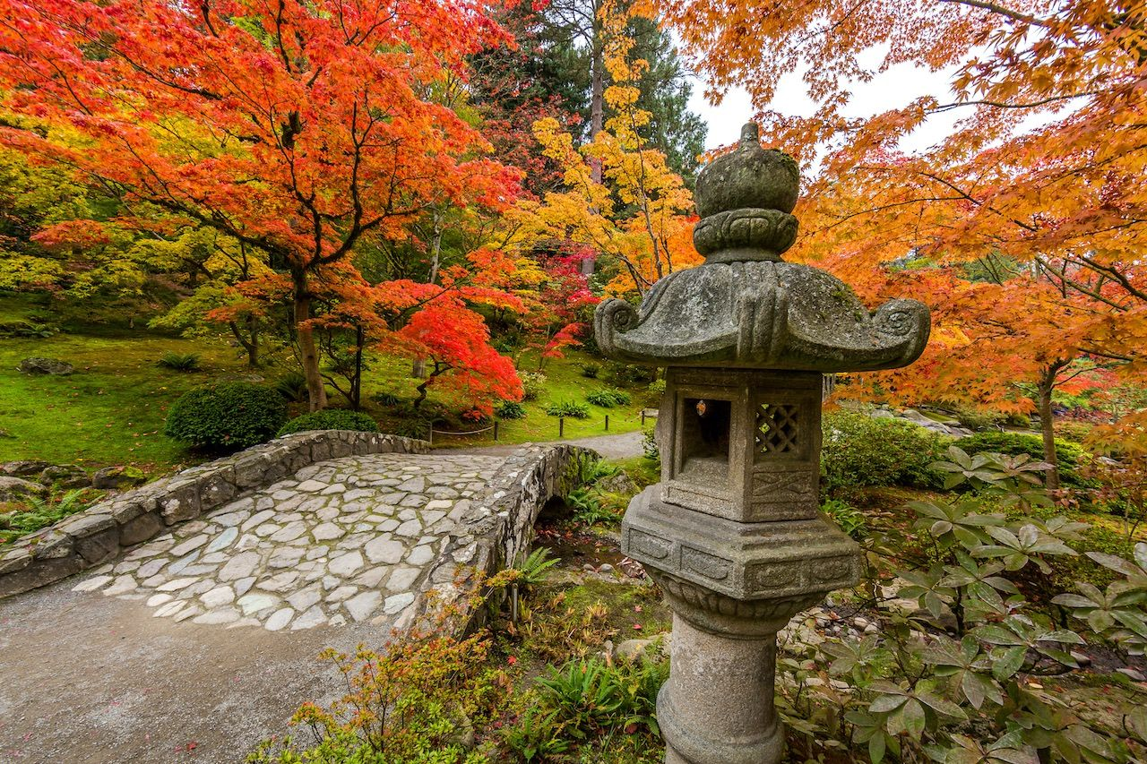 9 reasons you need to see Seattle in the fall