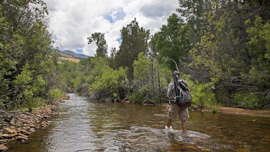 Jarbidge Wilderness Area Nevada don't re use