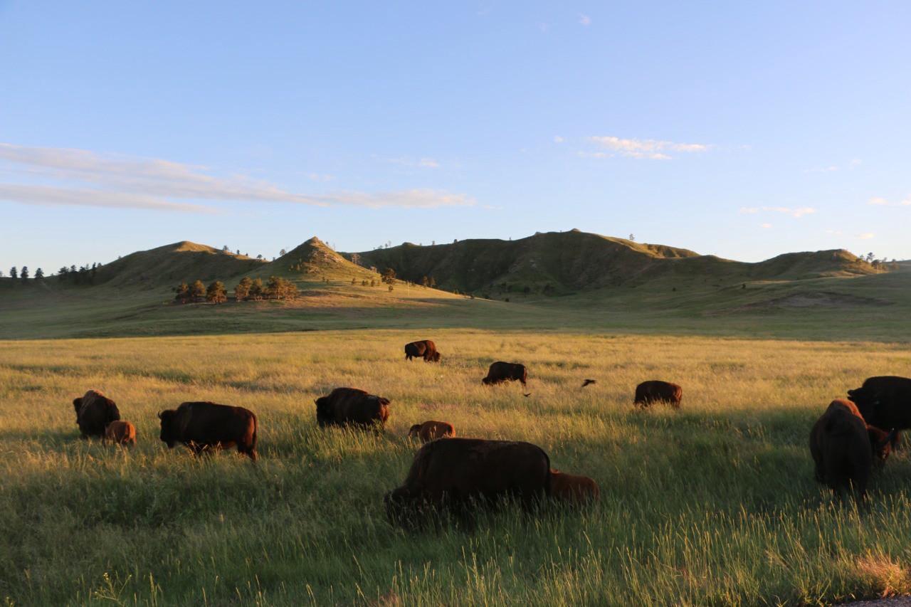 western-nebraska-2