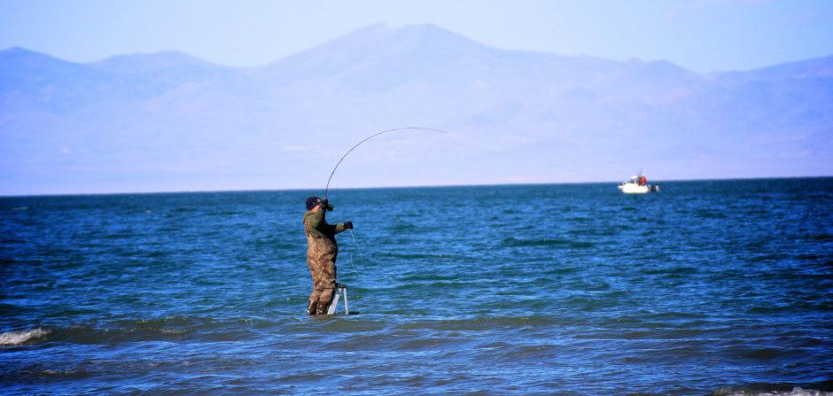 Pyramid Lake, NV fishing