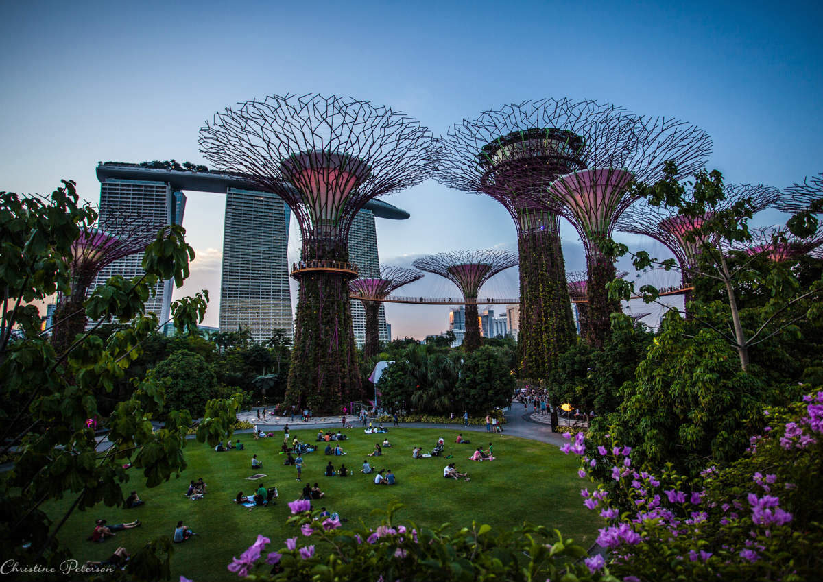 15 perfect Instagram shots of Singapore