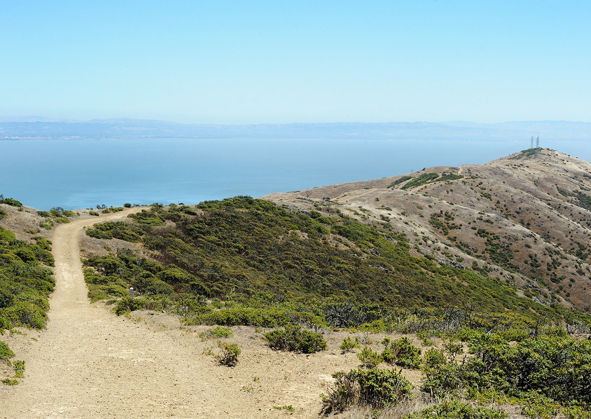 8 best trails in the Bay Area