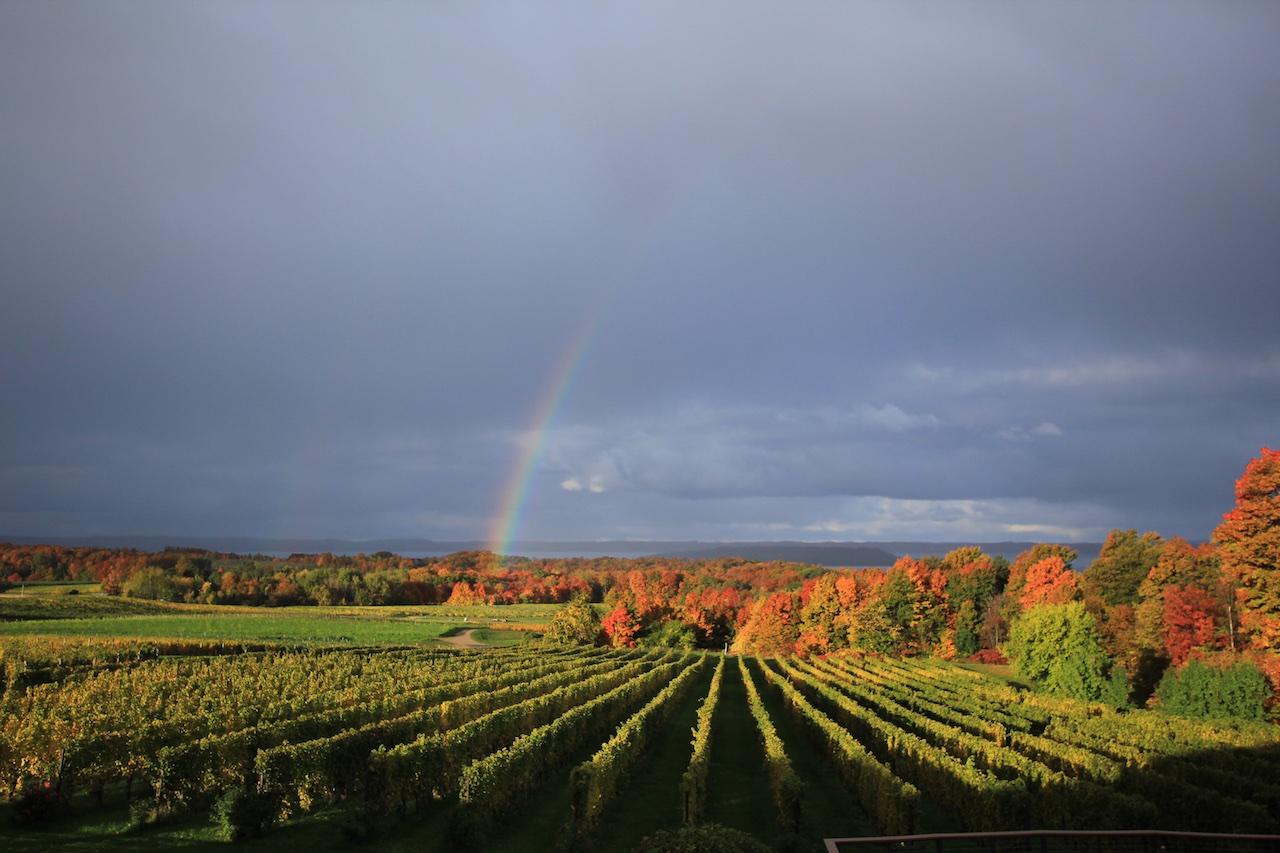 Chateau Grand Traverse winery Michigan