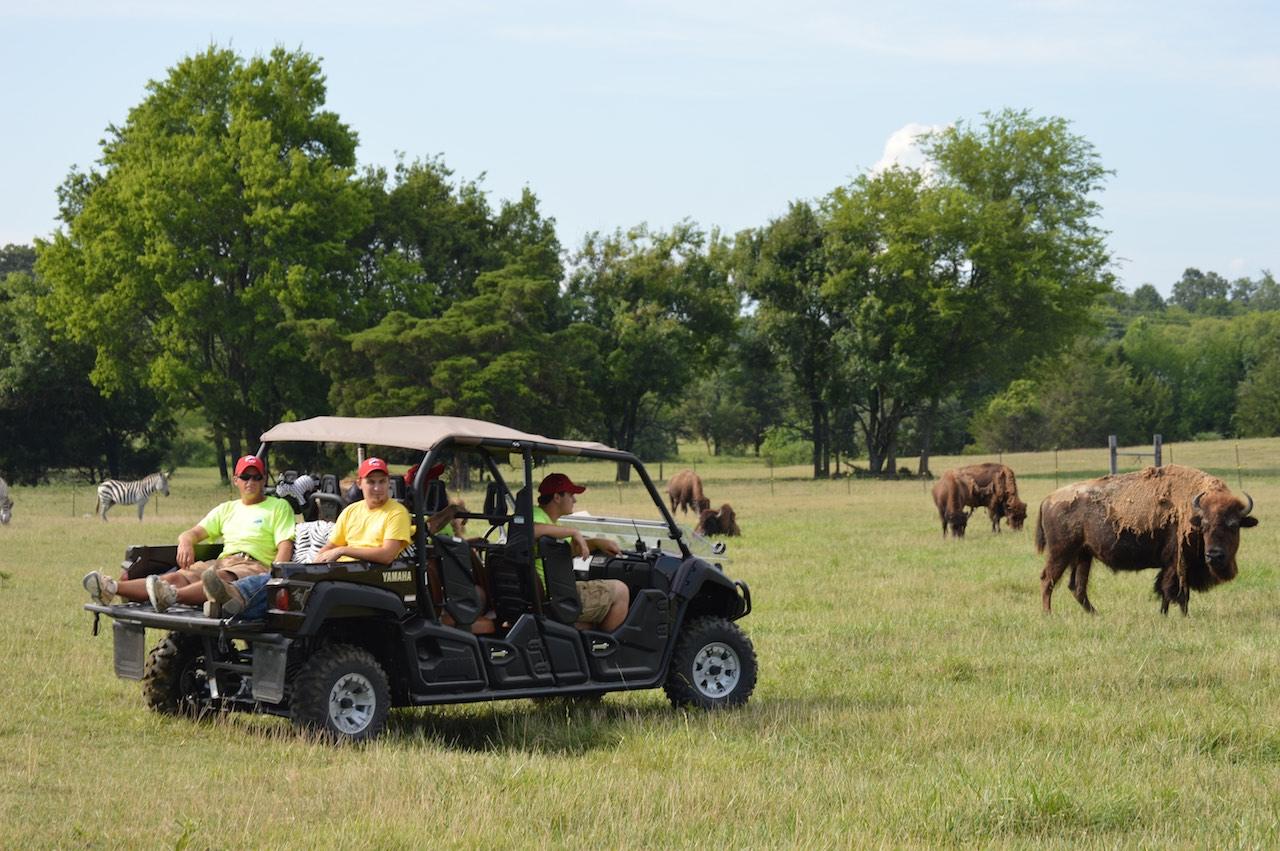 Tupelo Buffalo Park and Zoo