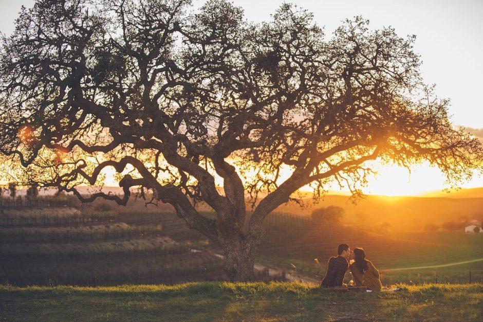 San Luis Obispo vineyards
