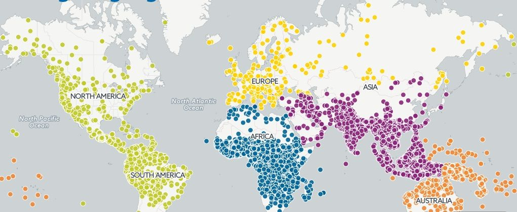 Check out this map of all the languages currently spoken in the world.