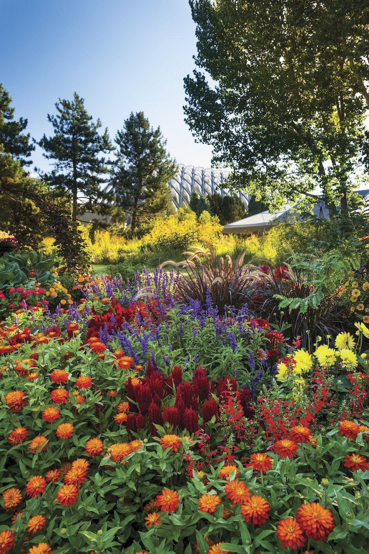 Denver Lush Garden