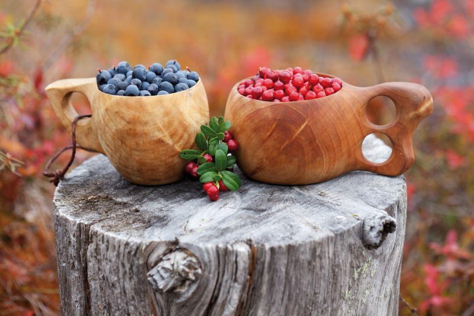 Finland berries