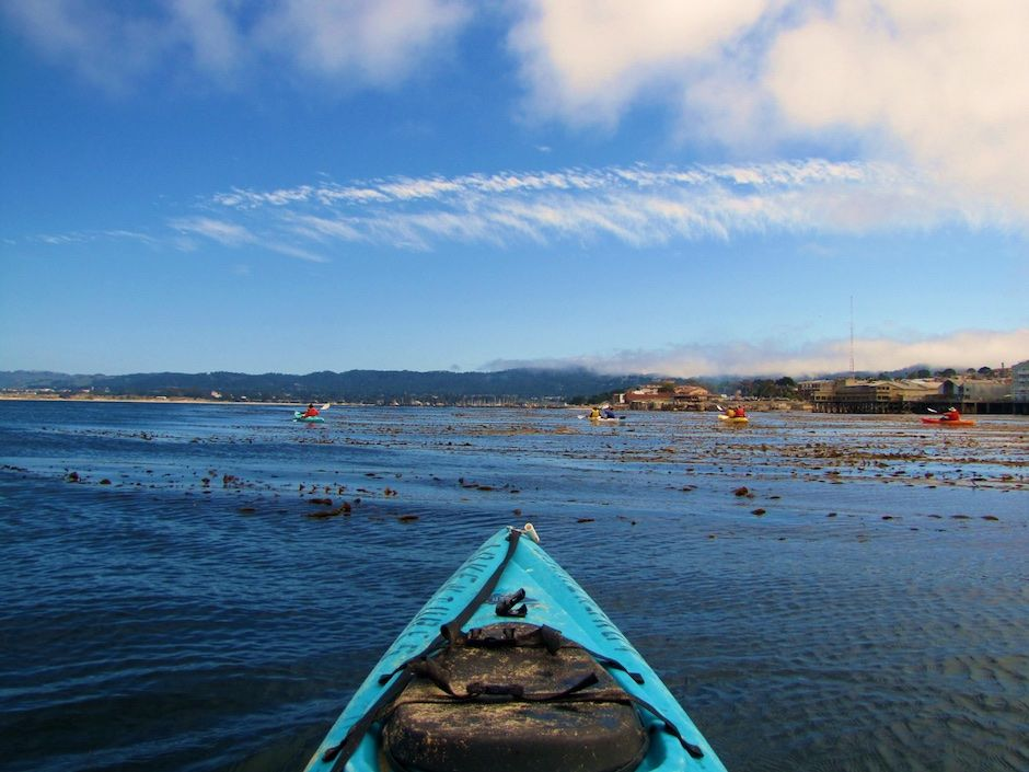 Monterey Kayaking with Adventures by the Sea