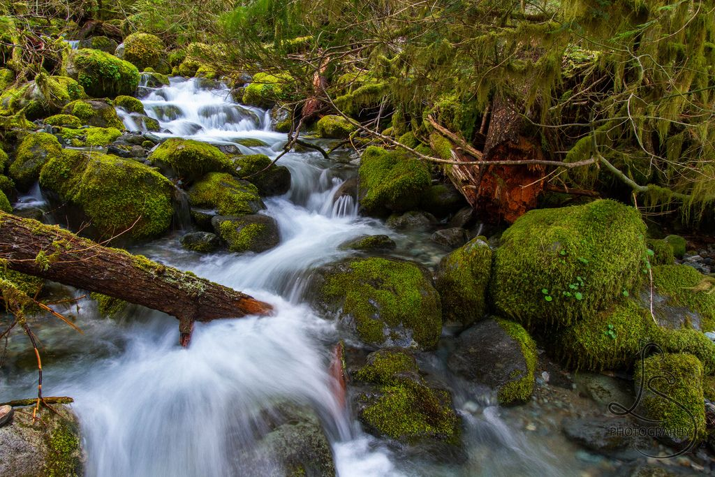 The best places to spend time alone in nature in Oregon